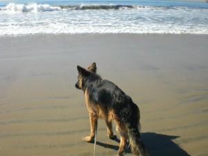 hannah beach 2